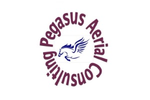 www.pegasus-drone.co.uk